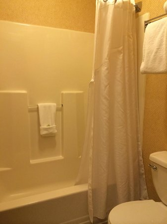 Holiday Inn Express Meadville: Shower & Toilet (King Bed)