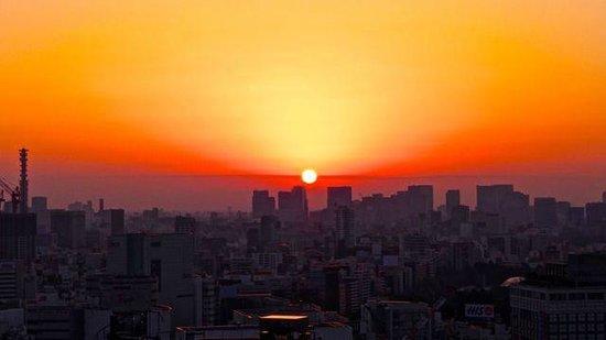 Keio Plaza Hotel Tokyo: Beautiful sunrises