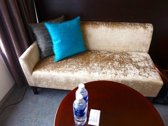 Keio Plaza Hotel Tokyo: Rather tired looking seater