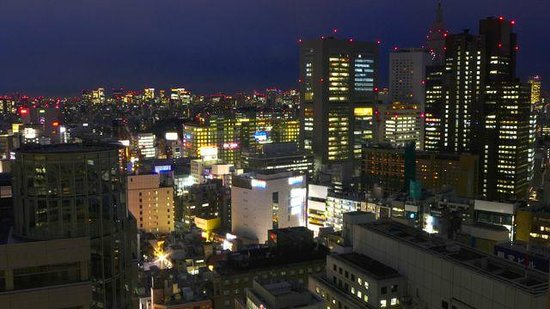 Keio Plaza Hotel Tokyo: Night view from bedroom