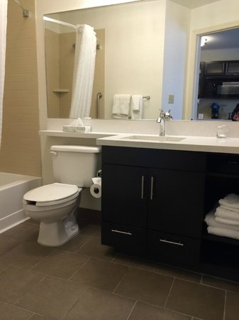 Candlewood Suites - Detroit/Ann Arbor: Studio - Bathroom