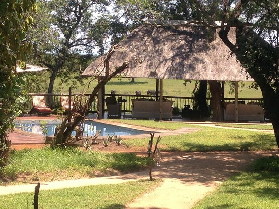 Sabi Sabi Selati Camp : pool and outdoor lounge