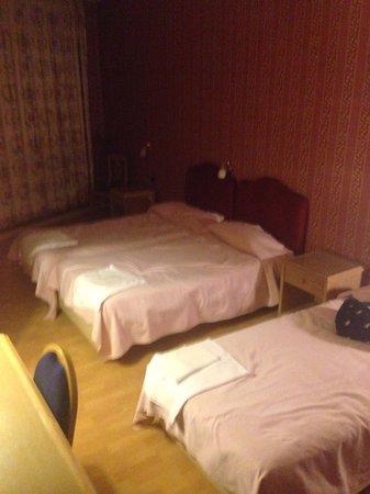 Hotel Poledrini: Camera quadrupla, molto spaziosa.