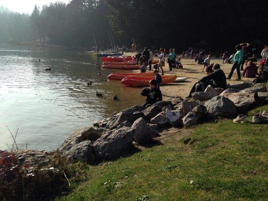 Center Parcs Longleat Forest: Lake