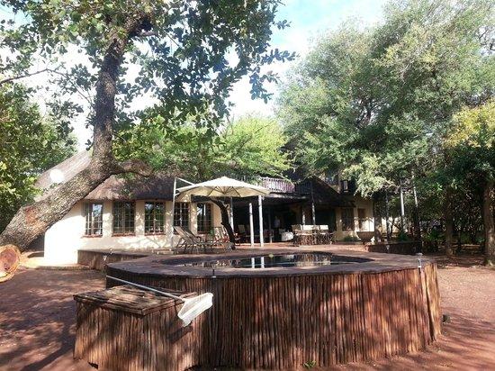 Mvuradona Safari Lodge: The lodge