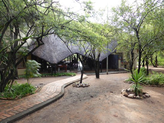 Mvuradona Safari Lodge : The lodge - entrance