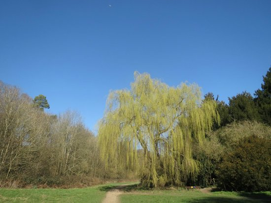 Vinters Valley Nature Reserve: In the heart of the reserve