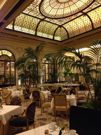 The Plaza: The Iconic Palm Court