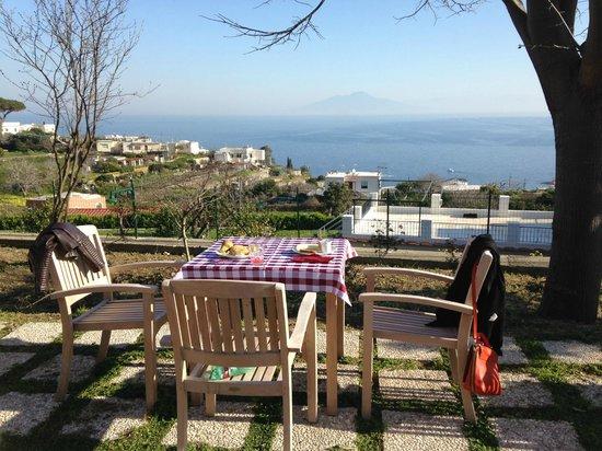 Capri Wine Hotel : Breakfast in the garden
