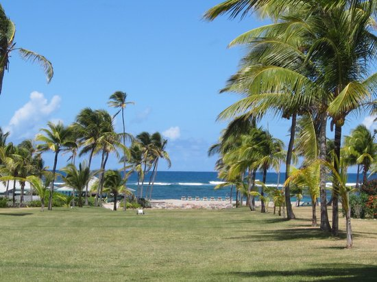 Nisbet Plantation Beach Club : The view from the Great House gardens