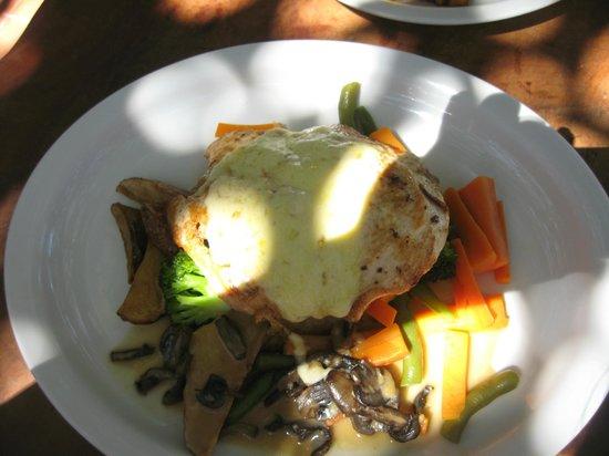Tree House Restaurante & Cafe: chicken with mushrooms