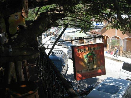 Tree House Restaurante & Cafe : Tree House