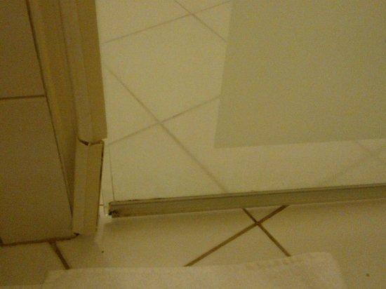 Scandic Silkeborg: shower door