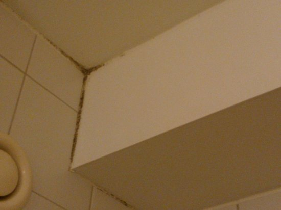 Scandic Silkeborg : upper ceiling corner in the bathroom