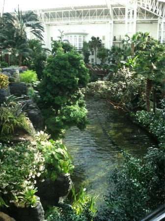 Gaylord Opryland Resort & Convention Center : And yes that is a boat ride!! All under one roof