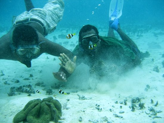 Conflict Bay Lodge: Local snorkeling guides