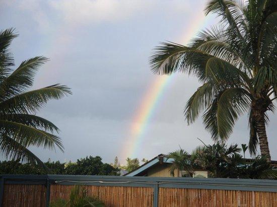 Maui Sunseeker LGBT Resort: Sundeck beauty