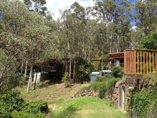 Ruffles Lodge & Spa: The Treehouse Pool Villas