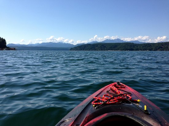 Alderbrook Resort & Spa: Kayaking