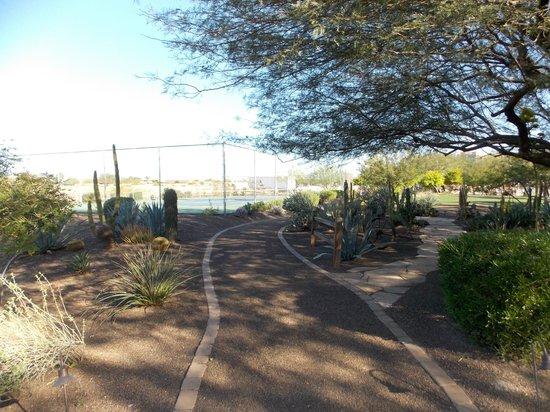 Cibola Vista: Walkways around the resort