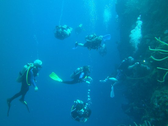 Cayman Brac Beach Resort: Diving on the wall