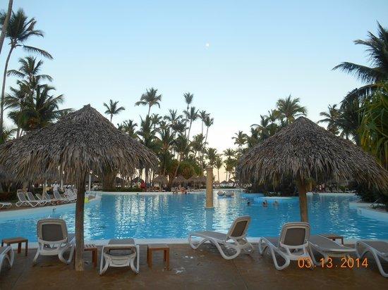Meliá Caribe Tropical: Piscina Level