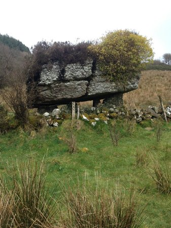Cromleach Lodge Country House Hotel: The dolmen on the Labby Walking route