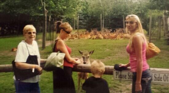 Wisconsin Deer Park: Deer Park in July