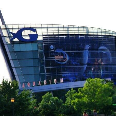 Georgia Aquarium : Aquarium