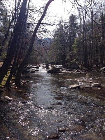Elkmont Campground: A River Runs Through It