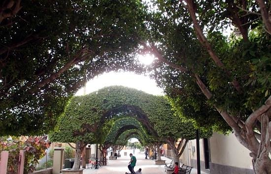 Coco Cabanas Loreto: Archways in Plaza