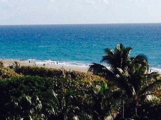 Palm Beach Marriott Singer Island Beach Resort & Spa : Good morning!