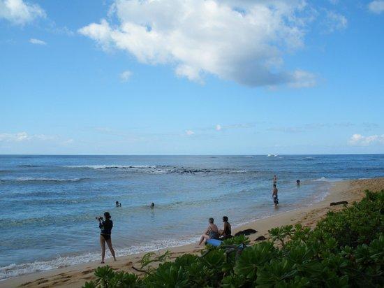 Koa Kea Hotel & Resort: beach