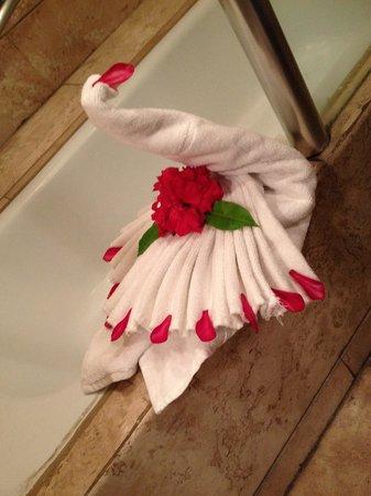 Camino Real Zaashila: Bathroom swan