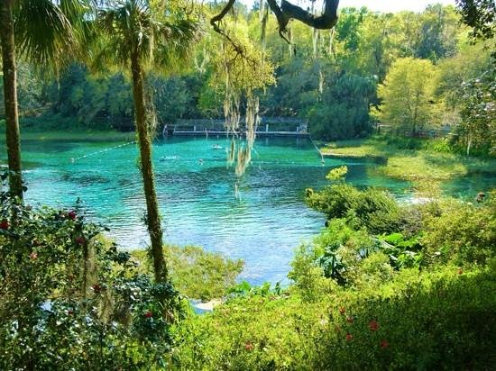 Image Result For Dunnellon Florida Map