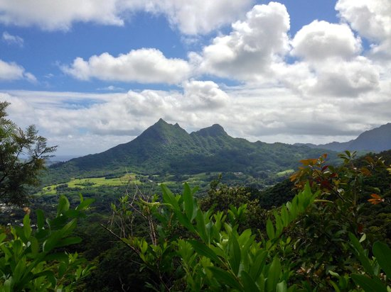 Maunawili Trail: View from the trail of Olomana