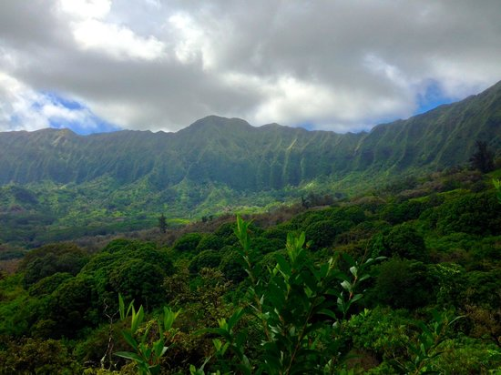 Maunawili Trail: The beautiful mountains as you go!