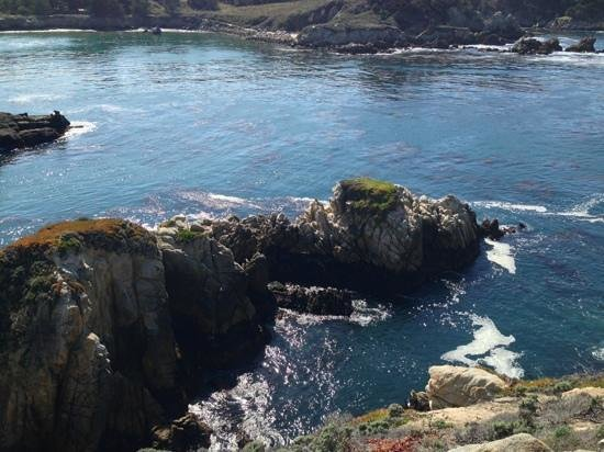 Tickle Pink Inn: point lobos trail run