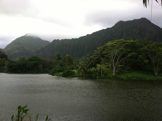 Hoomaluhia Botanical Gardens: The view on the lake