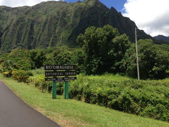 Hoomaluhia Botanical Gardens: Front entrance