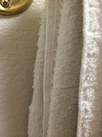 Red Roof Inn Austin - Round Rock: Hairs on the towels, including pubic hairs