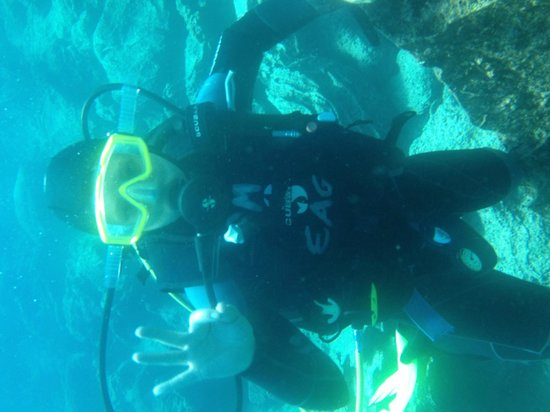 Eagleray Tours: Diver