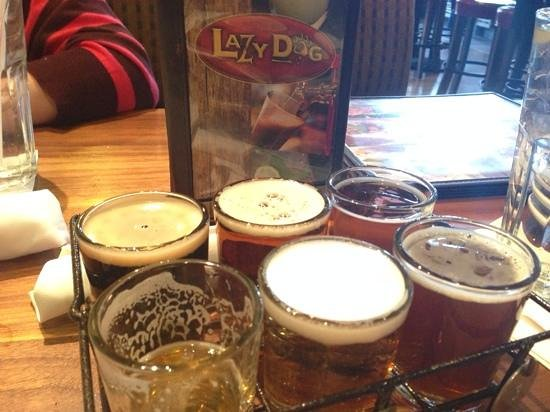 Lazy Dog: Beer! My favorite part of the meal.
