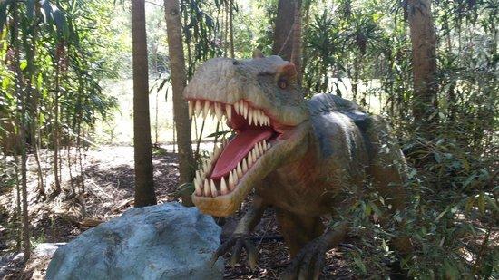 Palmersaurus: Dino
