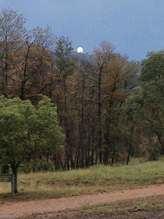 Warrumbungle National Park: Siding Spring Observatory through remnant burnt trees