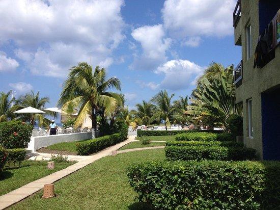 Casa del Mar Cozumel Hotel & Dive Resort: Lovely grounds at Casa Del Mar