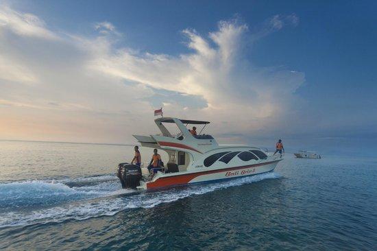 Bali Brio Fast Cruise: Set sail in style with Bali Brio