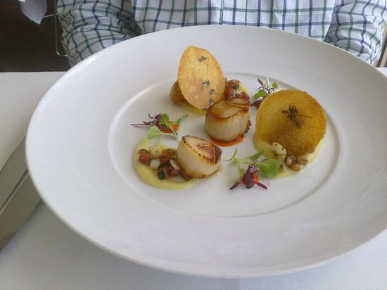 Catalina Restaurant: Entree - scallops