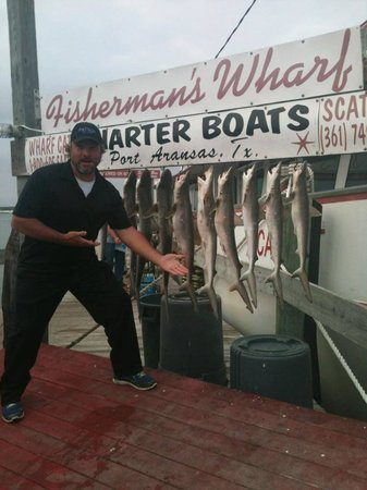 Fisherman's Wharf: Shark Fishing On The Scat Cat