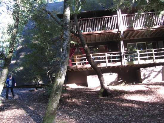 Redwoods River Resort & Campground : 1st floor mini suite